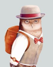 travelling-owl-animal-crew